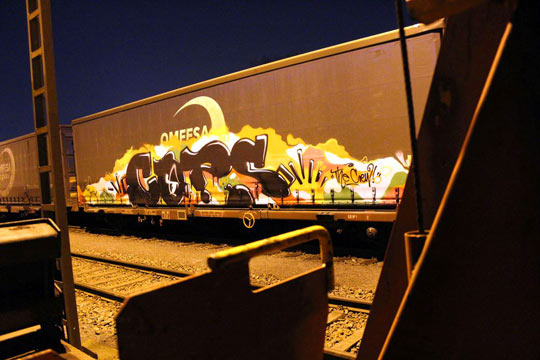 cops freight train
